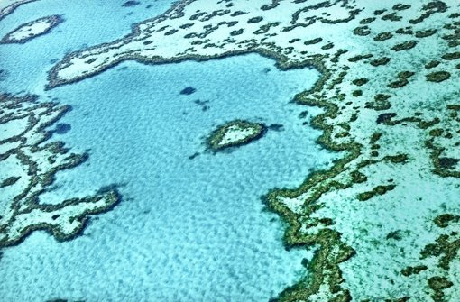 Great Barrier Reef hoffentlich gut geschützt
