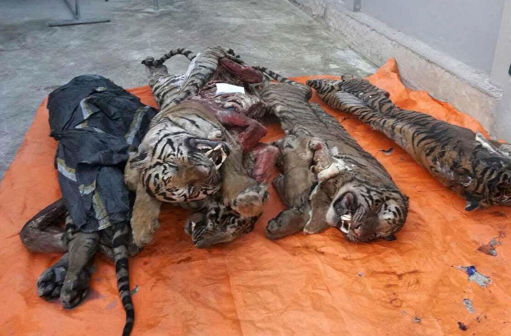 Die inneren Organe der Tiger hatte man den Tieren bereits entnommen. Foto: AFP