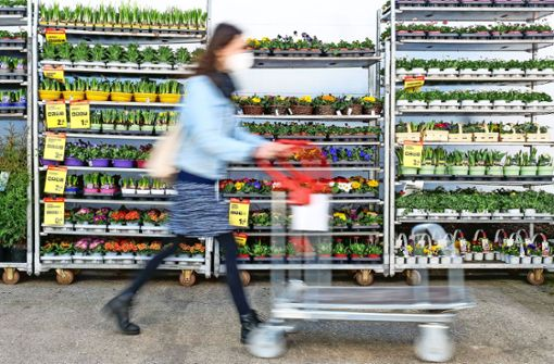 Verhaltener Andrang im Gartenmarkt