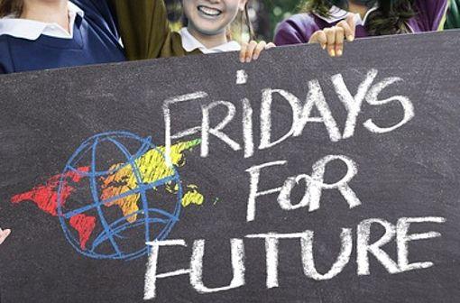 Regelmäßig demonstrieren Schüler freitags für mehr Klimaschutz.