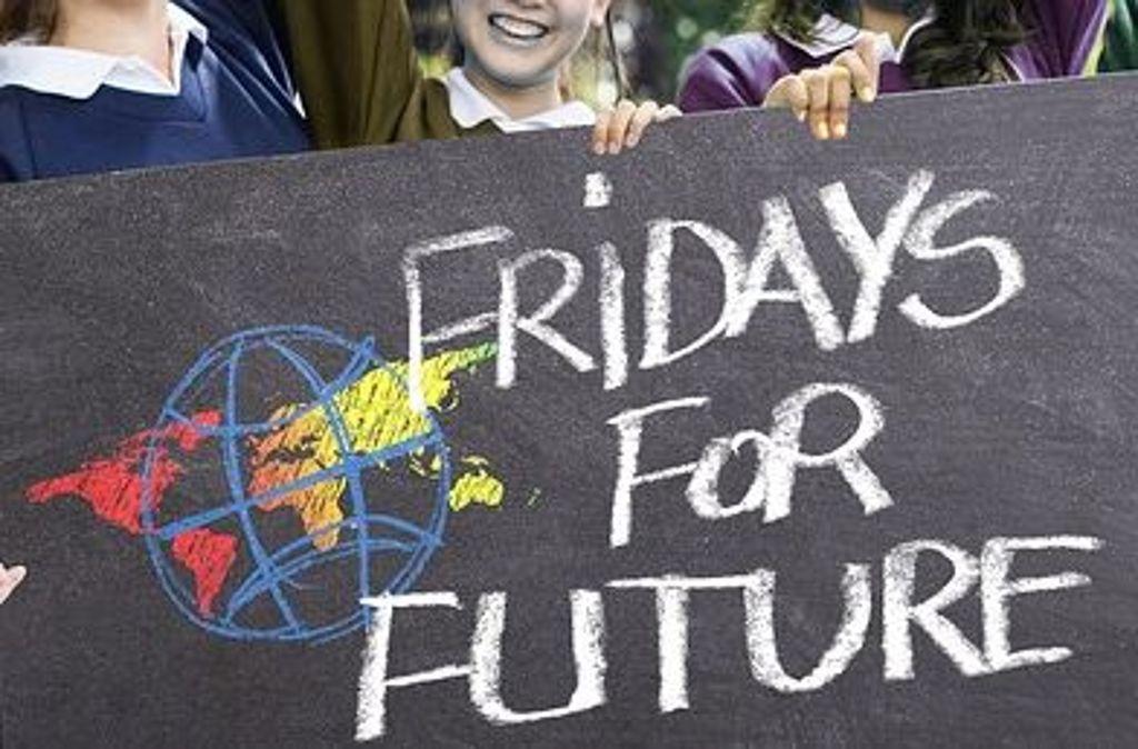 Regelmäßig demonstrieren Schüler freitags für mehr Klimaschutz. Foto: Pixabay