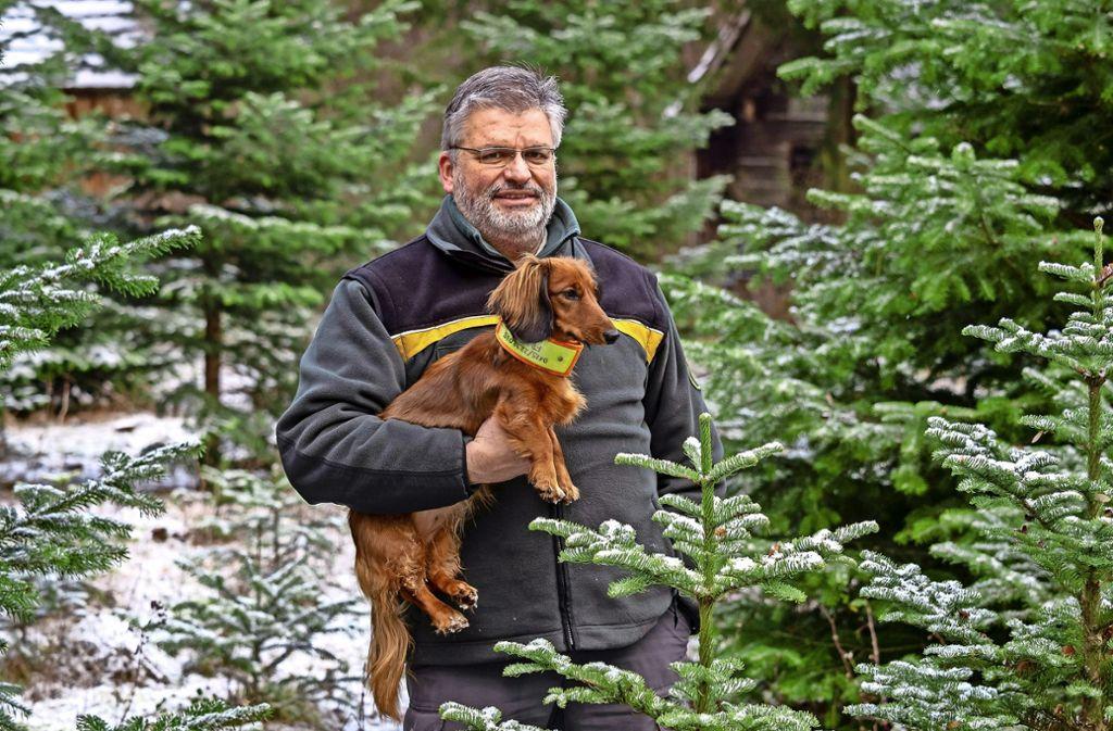 Steffen Frank mit seinem Hund Dana – in einer Schonung, in der auch Nordmanntannen für Weihnachten heranwachsen, Foto: factum/Weise