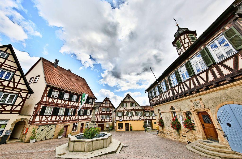 Bei einer Analyse sind vier Gebiete der Altstadt in Waldenbuch identifiziert worden, in denen Sanierungen sinnvoll sind. Foto: Archiv Krämer