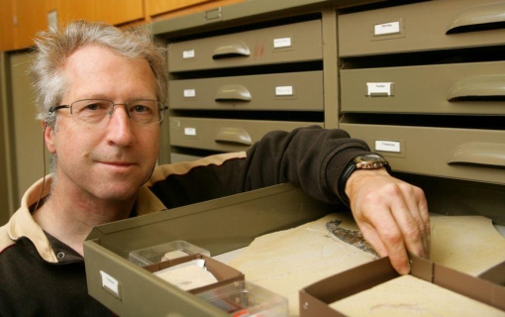 Günter Schweigert in der Sammlung des Löwentormuseums. Das Fossil der neu gefundenen Krebsart wird allerdings an der Uni  Greifswald aufgehoben. Foto: Achim Zweygarth