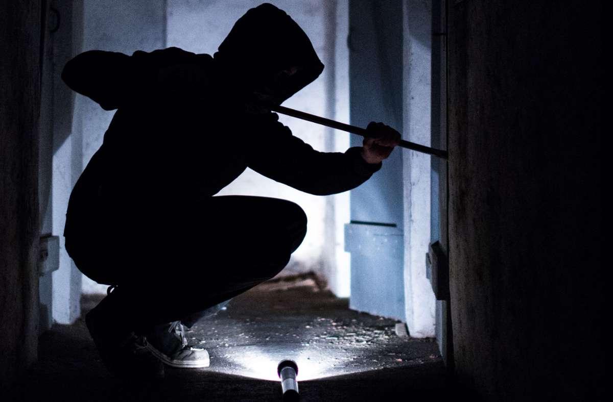 Der Einbrecher in Remseck zerschlug die Scheibe einer Terrassentür (Symbolbild). Foto: dpa/Silas Stein