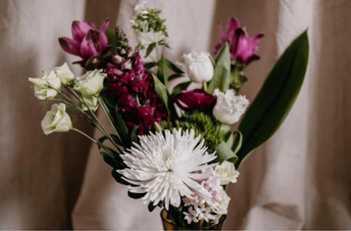 Shops, Studios & Ateliers: Hier bekommt ihr Blumen