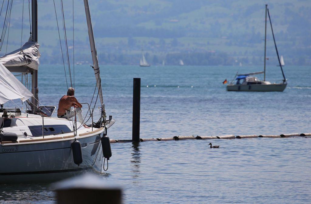 Im Bodensee vollzieht sich derzeit ein Wandel. Foto: dpa
