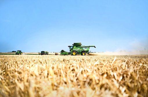 Treibt der Weizenpreis die Brotkosten nach oben?