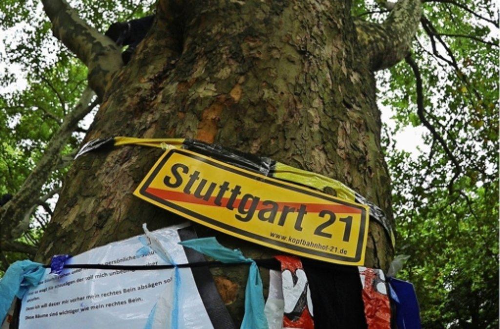 In Leonberg sollen die in Stuttgart gefällten Bäume zum Kunstwerk werden. Foto: Archiv/Kuhnle