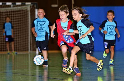 Stuttgarter Kickers fordern zusätzliche Halle