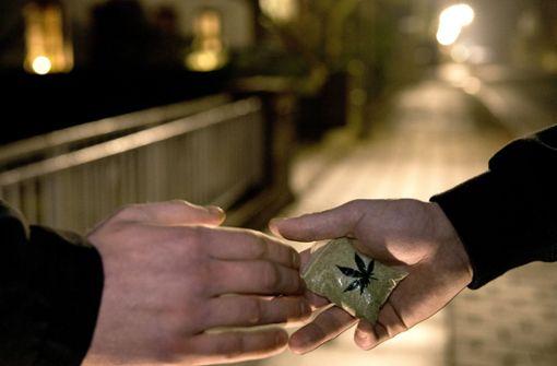 Polizei sichert 220 Kilogramm Marihuana