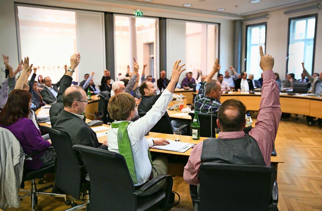 Der aktuelle Göppinger Gemeinderat nach seiner Wahl vor vier Jahren. Foto: