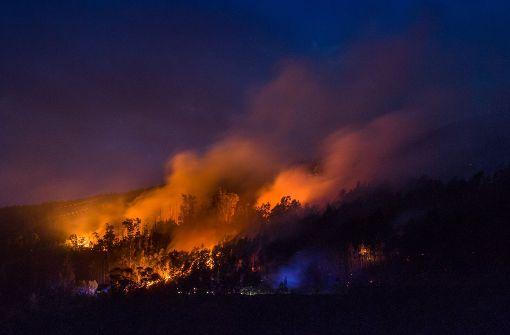 Über 600 Feuerwehrleute kämpfen gegen die Flammen