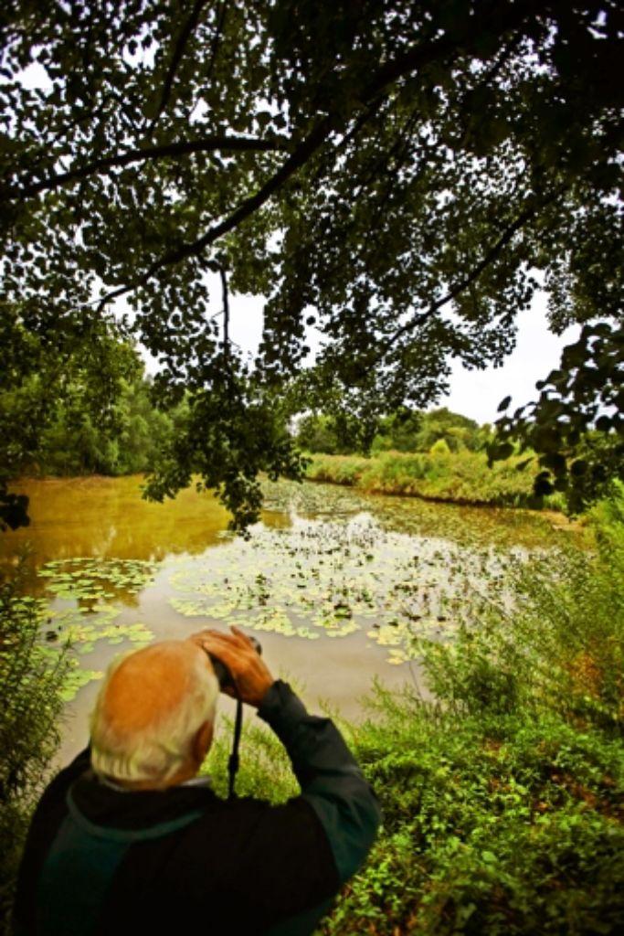 Ein Vogelbeobachter am  Tümpel im  Gebiet Morgensand/Seelachen Foto: Gottfried Stoppel