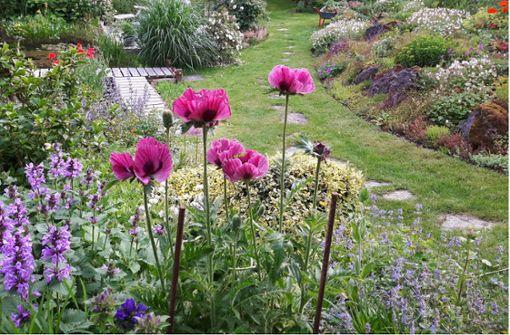 Gartentipps mit Spaten und Laptop