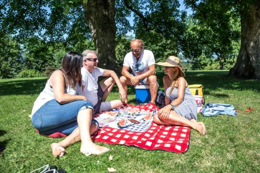 Die Picknick-Oasen der Stadt