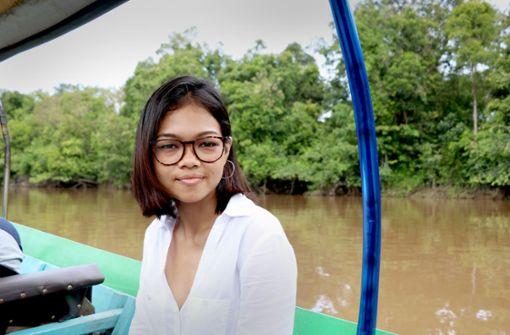 Auf der Suche nach dem verlorenen Wald