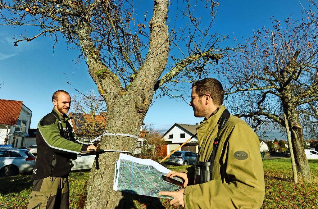 Stephan Albrecht (links) und Florian Schmid sind zwei der 40 studentischen Hilfskräfte, die derzeit Hildrizhausen und den umliegenden Forst durchstreifen. Foto: factum/Granville