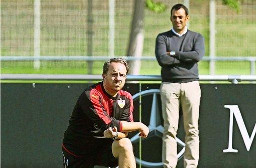 Das Geduldspiel mit dem Trainer