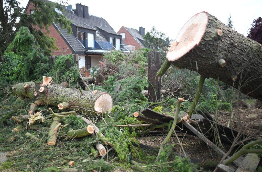 Der Wirbelsturm hat am Niederrhein Bäume entwurzelt und Dächer abgedeckt. Foto: dpa