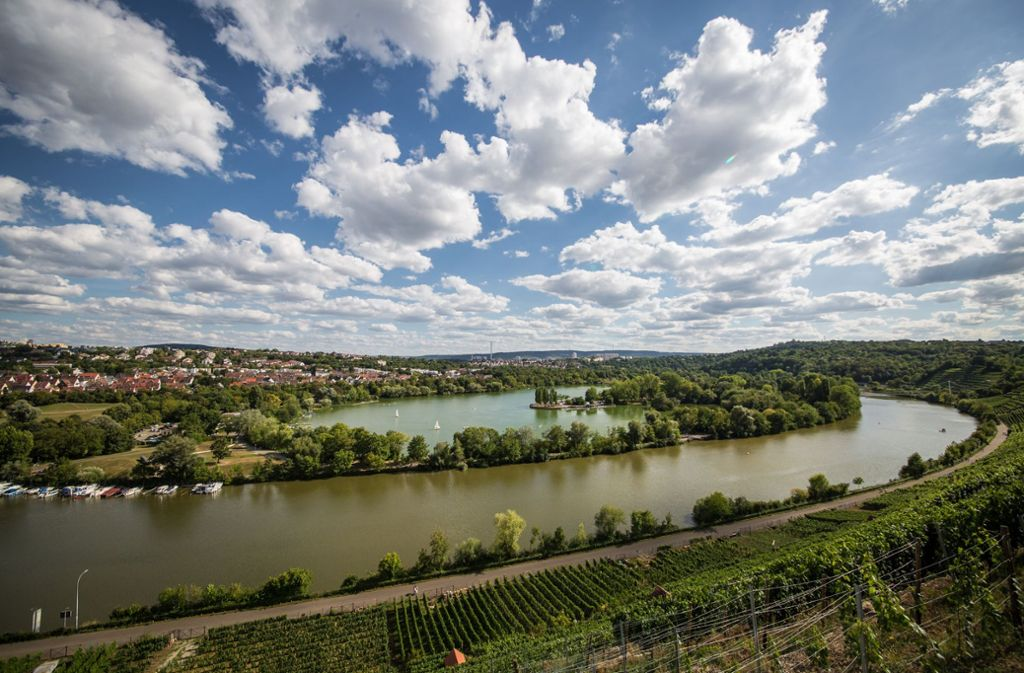 Blick über den Max-Eyth-See und den Neckar in Stuttgart-Mühlhausen. Foto: Lichtgut/Christoph Schmidt