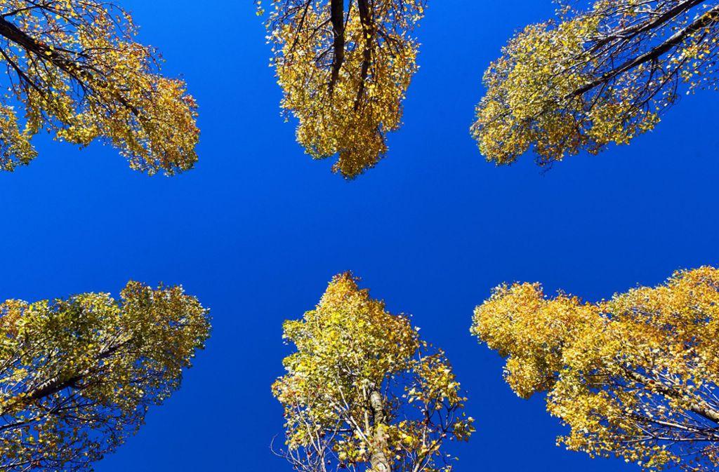 Am Wochenende besteht die Hoffnung, mal wieder blauen Himmel zu sehen. Foto: dpa/Horst Ossinger