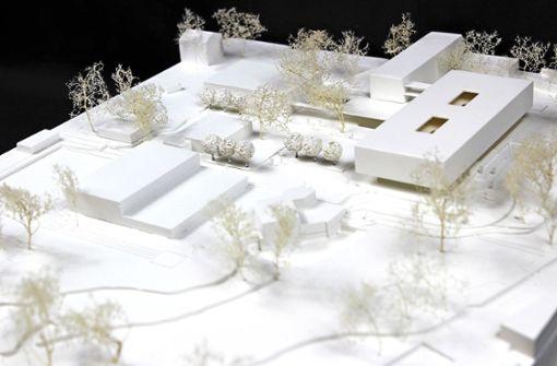 Die Zukunft der Zollberg-Realschule