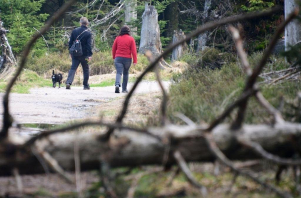 Nach Informationen der Stuttgarter Zeitung soll das Nationalparkgesetz zum 1. Januar 2014 in Kraft treten. Foto: dpa