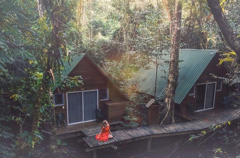 Die satten grünen Regenwälder machen Malaysia zu einem einzigartigen Paradies.  Foto: Unsplash