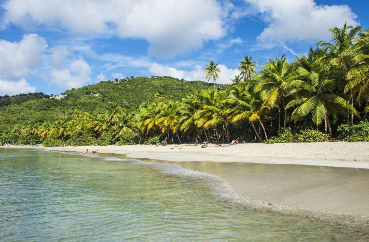 Im Dezember unter Palmen. In der Karibik zum Beispiel ist dies kein Problem. Foto: imago images/Westend61/Michael Runkel