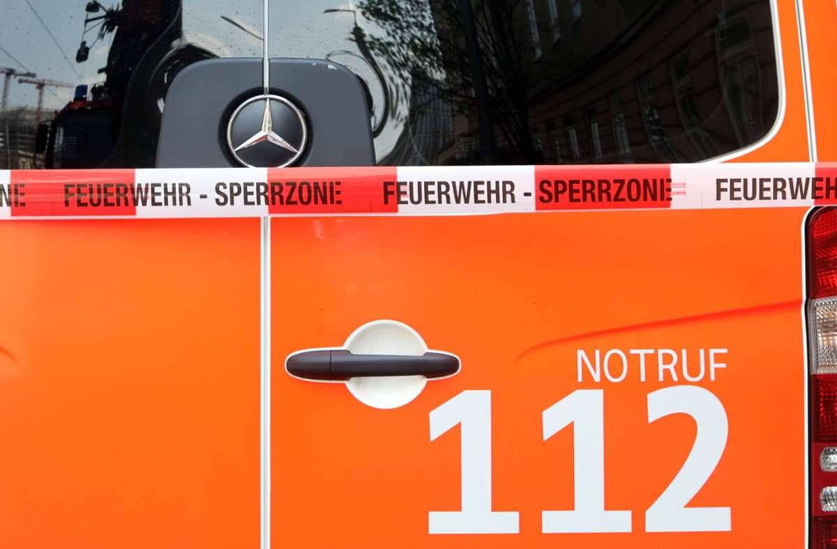 """Die Feuerwehr stellt fest: Rehe seien """"beeindruckend gute Schwimmer"""" (Symbolbild). Foto: imago images//Sabine Gudath"""
