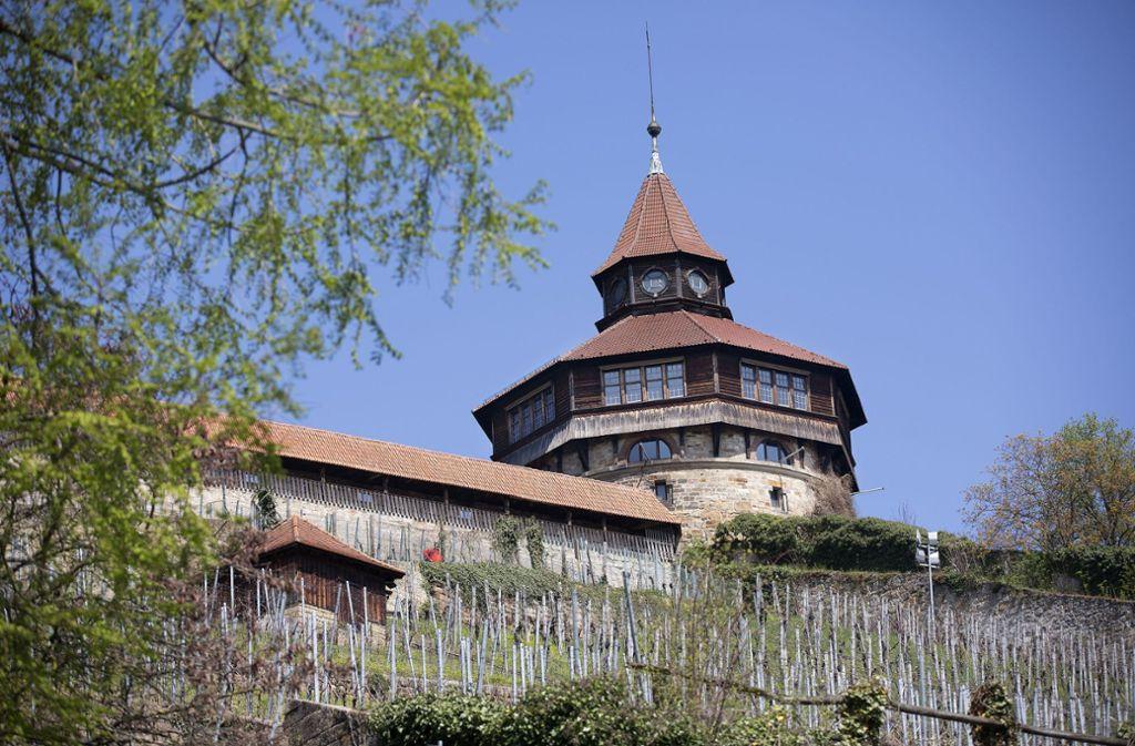 Der Dicke Turm kommt in den zweiten Frühling und wird aus seinem Dornröschenschlaf erweckt. Foto: /Horst Rudel