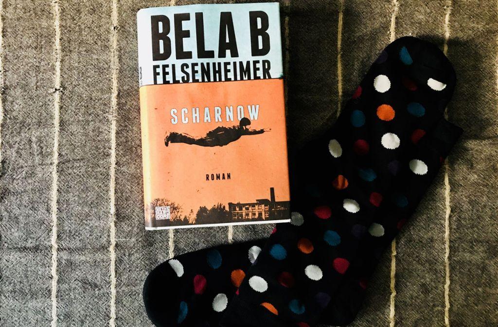 """Scharnow"",    Bela B Felsenheimer, Heyne, 20 Euro Foto: Setzer"