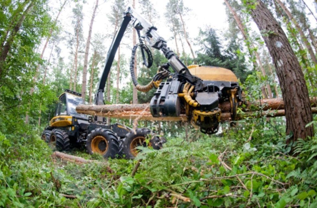 Auch die Deutschen sind laut WWF nicht unschuldig, wenn es um den Niedergang der Ressourcen der Erde geht. Foto: dpa