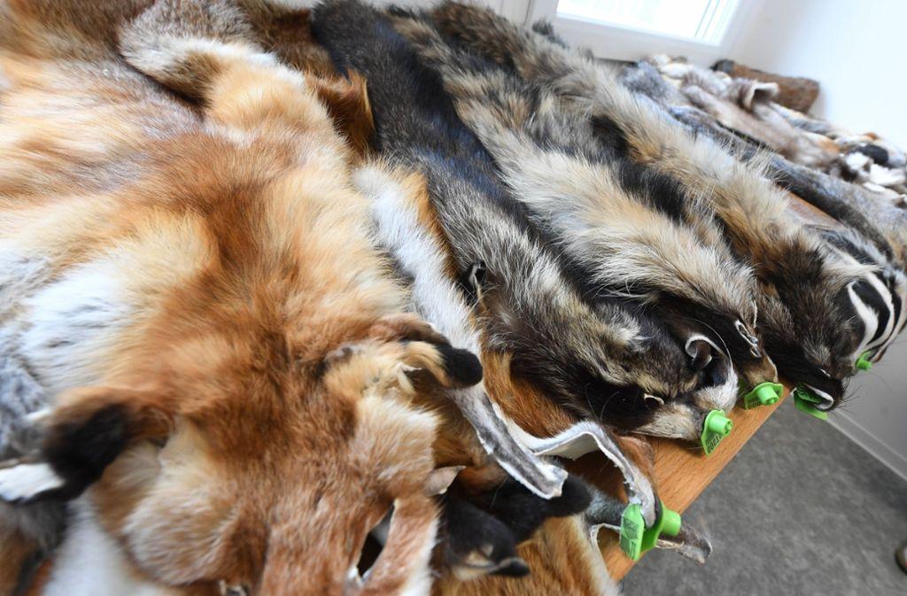 Diese Tiere sind nicht wegen ihres Fells, sondern aus anderen Gründen gestorben. Foto: dpa