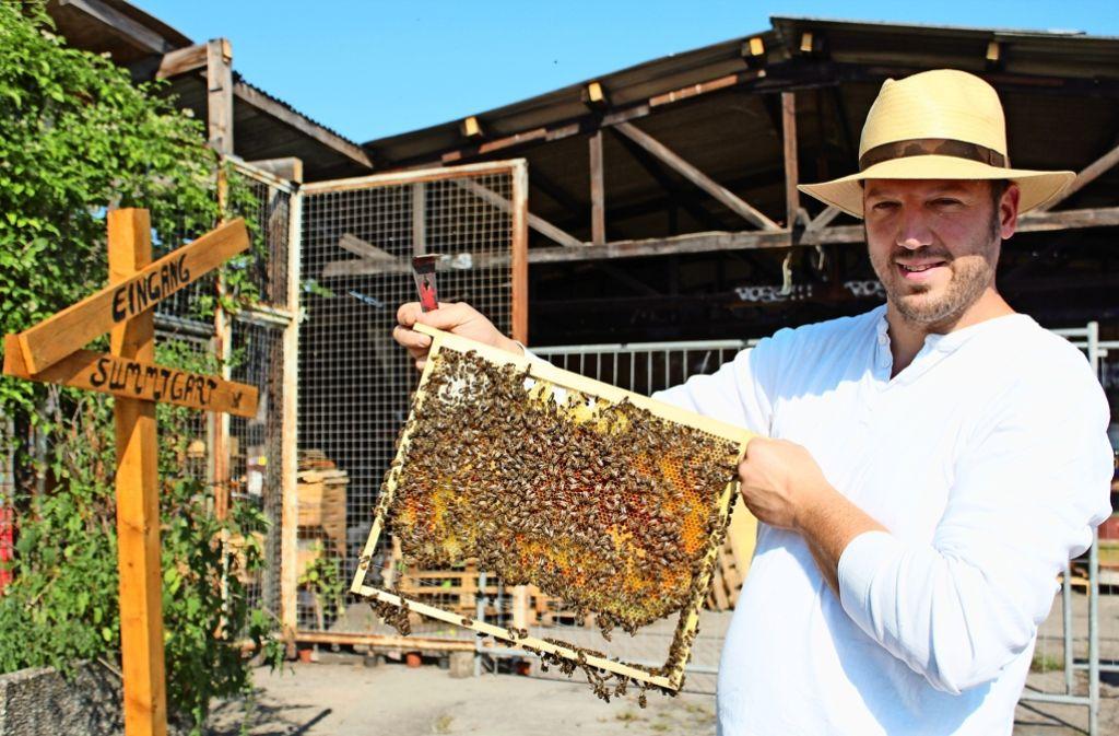 Tobias Miltenberger präsentiert stolz seine Bienen. Foto: Sophie Maier