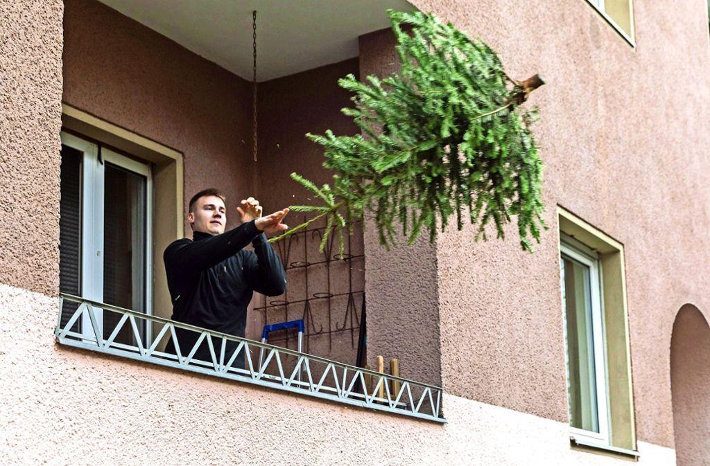 Ab nach draußen: Am Samstag werden die Christbäume abgeholt. Foto: imago stock&people