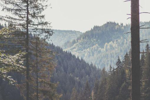 10 Tipps für eine Auszeit im Schwarzwald
