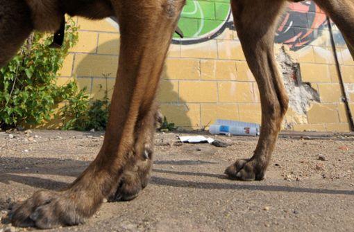 Beamte prügeln auf Polizeihund ein