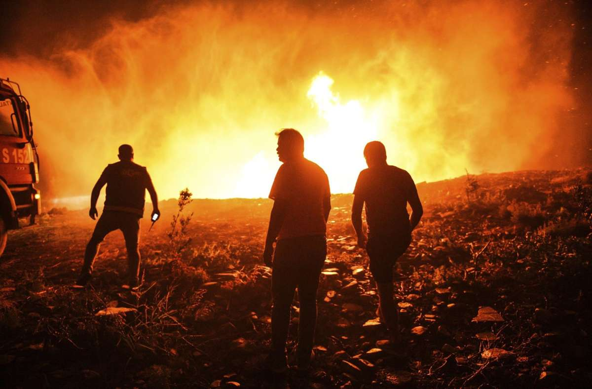 Brände in der Türkei Foto: dpa/Uncredited
