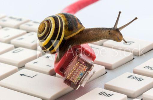 Langsames Internet für viele ein Ärgernis