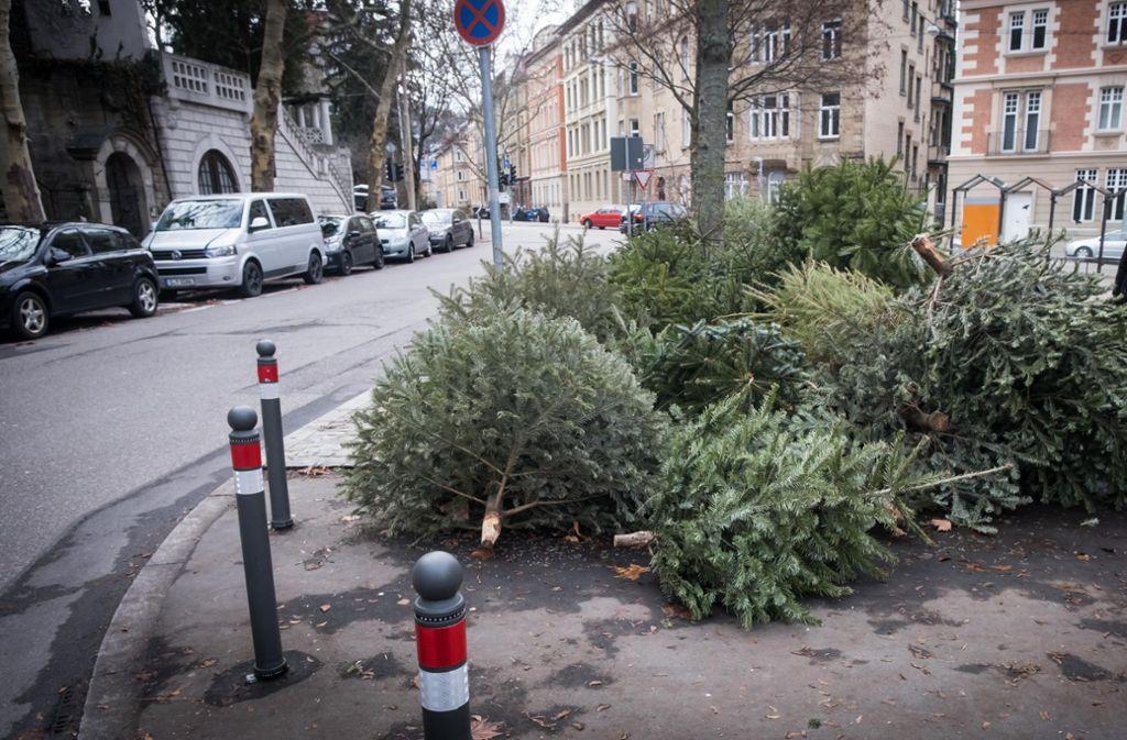 Auch in der Etzel-/Alexanderstraße wurden illegalerweise Christbäume entsorgt. Mittlerweile sind diese aber abgeholt worden. Foto: Lichtgut/Achim Zweygarth