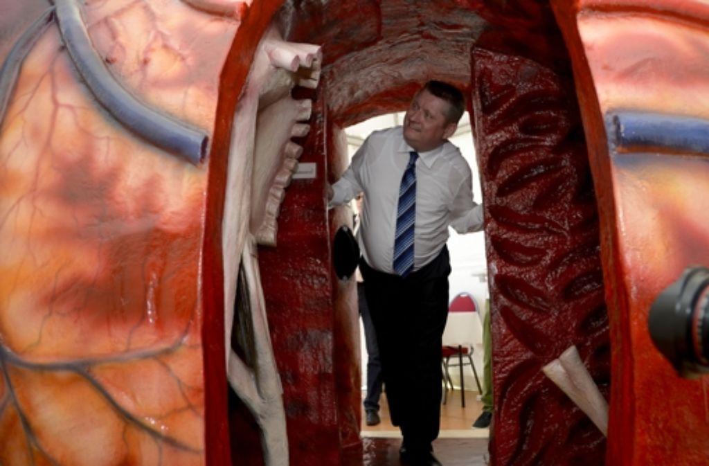 Bundesgesundheitsminister Hermann Gröhe (CDU) während dem Tag der Organspende in einem übergroßes Modell eines menschlichen Herzens. Foto: dpa