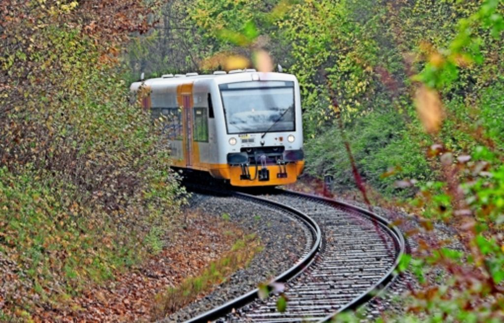 Auch der Ausbau und die Elektrifizierung des   Erfolgsmodells Schönbuchbahn soll vom Land gefördert werden, Foto: factum/Bach