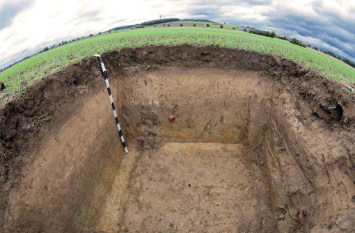 Lössboden wird Boden des Jahres 2021