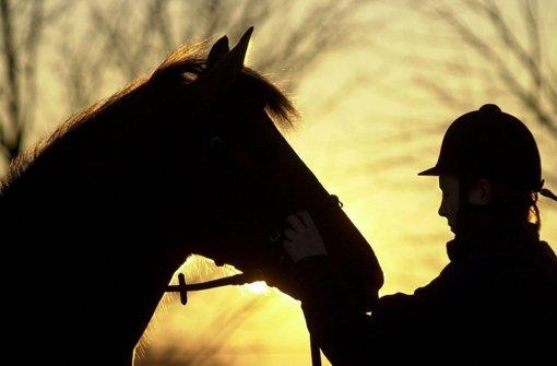 Aufatmen bei Hofbesitzern und Reitern