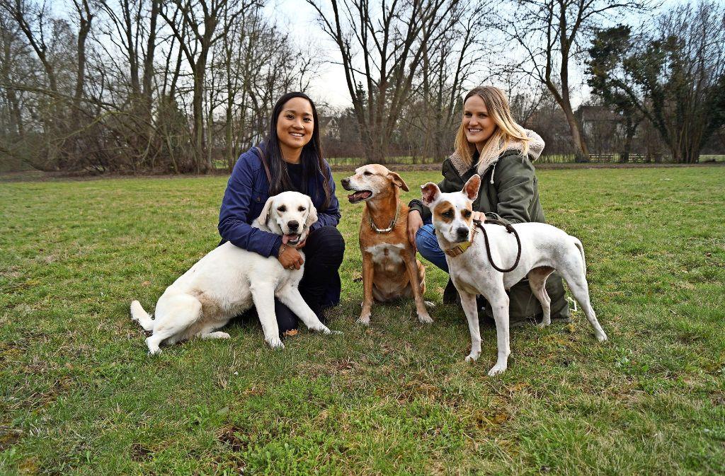 Thao Vo (links) und Lena Strohm mit ihren eigenen Hunden. Foto: privat