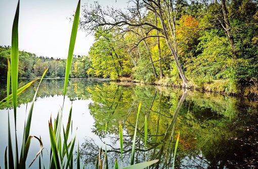 EnBW will zwei Seen verkaufen