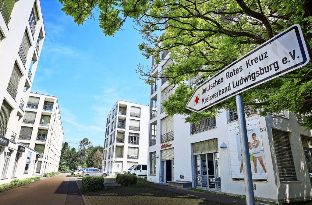 Die DRK-Mitglieder aus dem Kreis Ludwigsburg haben sich in Gerlingen getroffen. Foto: factum/Weise