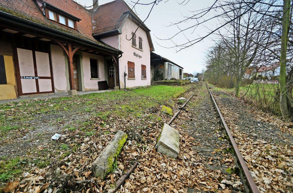 Über die stillgelegte Trasse von Markgröningen über Möglingen nach Ludwigsburg sollen bald wieder Eisenbahnen fahren – so will es das Ludwigsburger Rathaus. Foto: factum/Granville